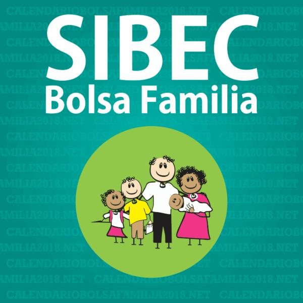 consulta-sibec-e1538442640495