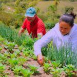 fomento-as-atividades-produtivas-rurais-inscricao-150x150