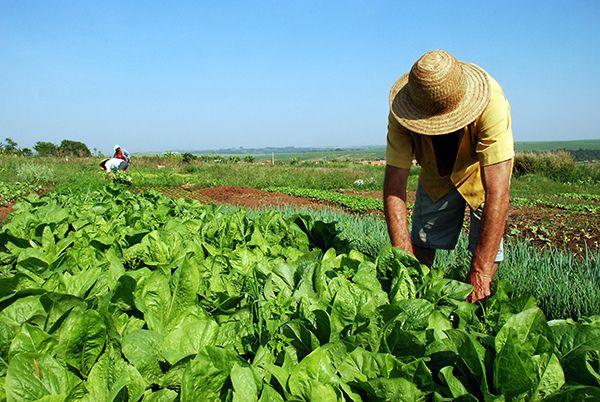programa-nacional-de-reforma-agraria
